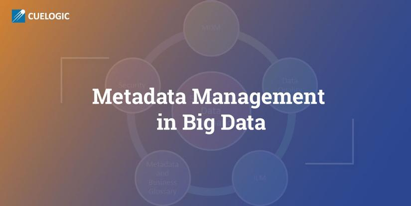 Metadata Management in Big Data Systems: A Complete Guide