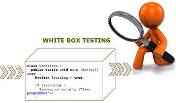 Về White box Testing